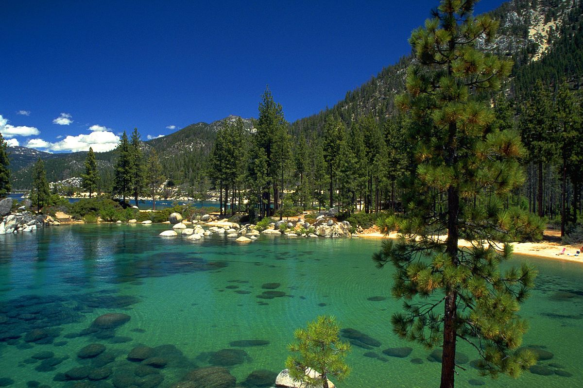 tahoe cabins realty street lake shoshone south listings ca